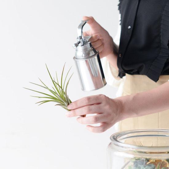 【瓶のなかの小さな庭】第4話:テラリウムの水やりやお手入れで、長く楽しむポイント3つ