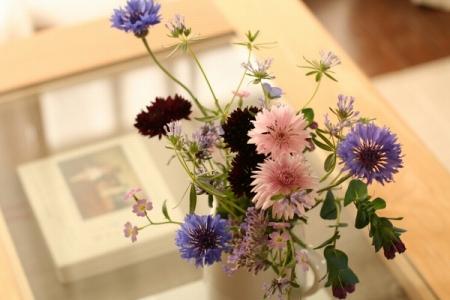 クラシノート-植物とお花のある暮らしー 【埼玉県・ようさま】