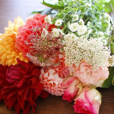 【特集|花屋のまかない】第5話:金曜日の夜は花を買って帰ろう。