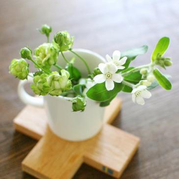 【特集|花屋のまかない】第6話:お花を活けるのは自由と気軽さが一番!