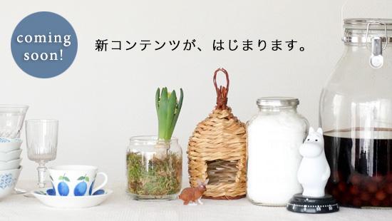 柳沢小実さん、socukaさんに連載いただくコンテンツが始まります!