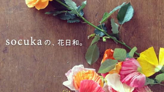 socukacolumn_main_140226