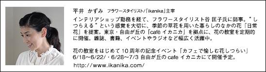 hiraikazumi_profile2014_1