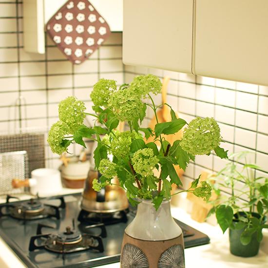 【店長コラム | 今日の花】キッチンで活けた花を、できたての料理を運ぶみたいにしてリビングへ。