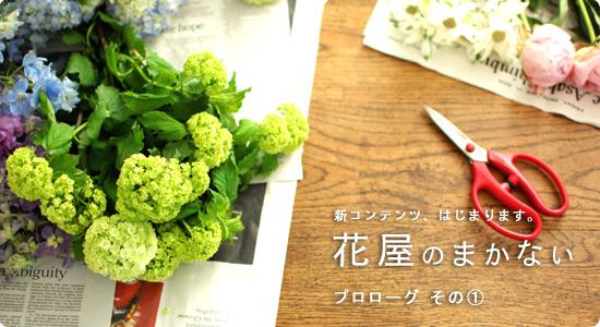 makanai_top6