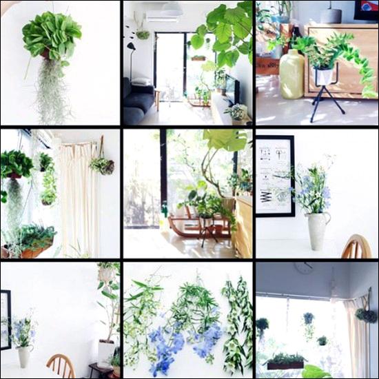 【店長コラム】植物の写真ばかりだった♪めずらしくアクティブだったシルバーウィーク。