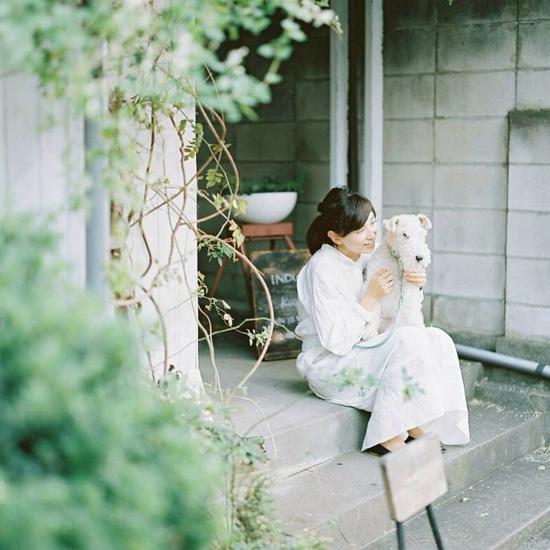 dog_hirai_011
