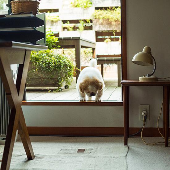 interior_hikita__C1A5091