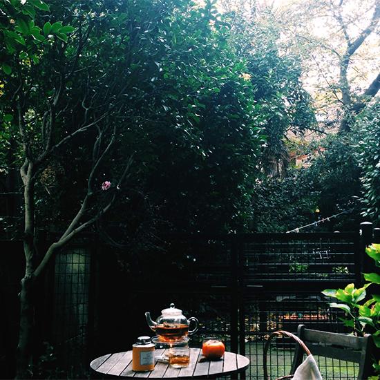【朝の過ごしかた】クリエイティブな発想を生むための、朝の小さな習慣。(nest Robeプレス・滝口さん)