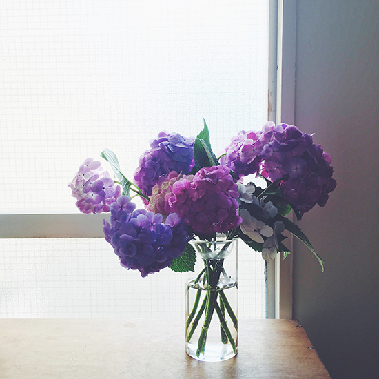 【スタッフコラム】我が家の玄関百景。飽きっぽい私を変えてくれた、花のこと。