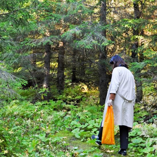 【ノルウェー日記】北欧の秋のたのしみ?ノルウェーの森で「キノコ狩り」してきました。