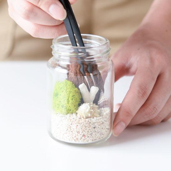 【瓶のなかの小さな庭】第2話:水やりなしでOK!家にある空き瓶で作れる、いちばん簡単なテラリウム。