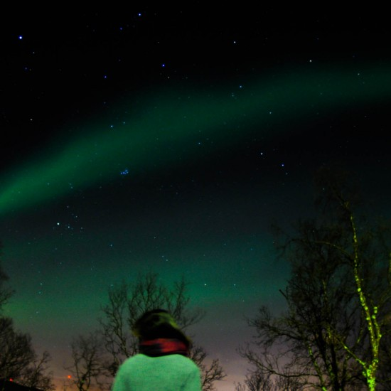 【ノルウェー日記】オーロラの季節がはじまりました!