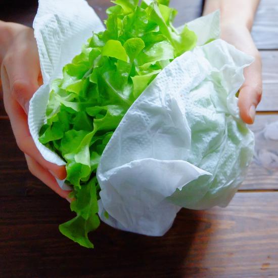 【ただいま収穫中!】八百屋スタッフが教える、旬のレタスを使ったあったかレシピ