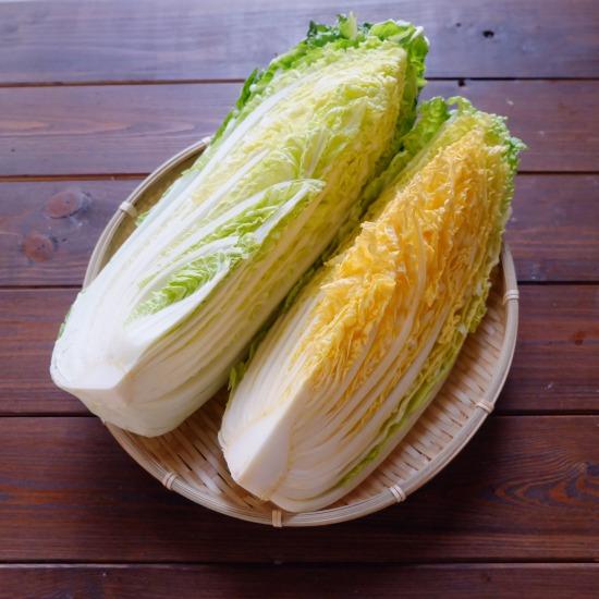 【ただいま収穫中!】旬の白菜1/4個を使い切り、簡単「蒸し焼き」レシピ
