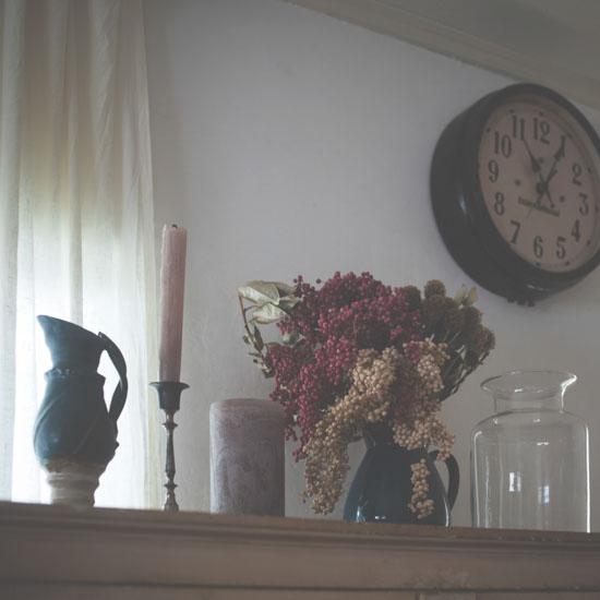 dryflower_0208