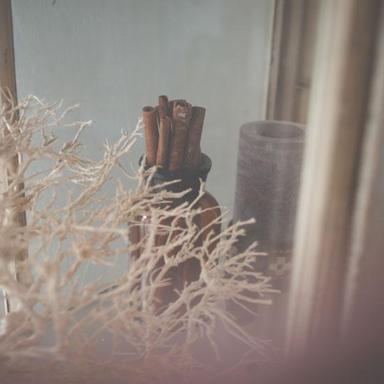 dryflower_0208_1