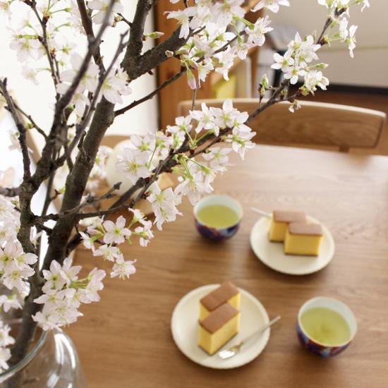 【スタッフコラム】春を先取り?お家で「お花見」してみました。