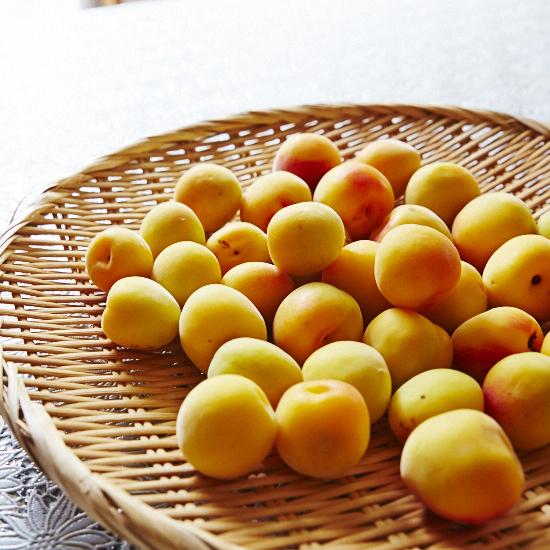 【梅があれば大丈夫】第1話:塩と梅だけ、この上なくシンプルな保存食「梅干し」の底力。