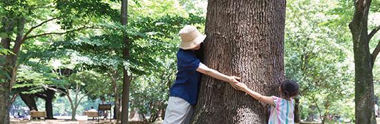 子どもと楽しむ「木育」の世界