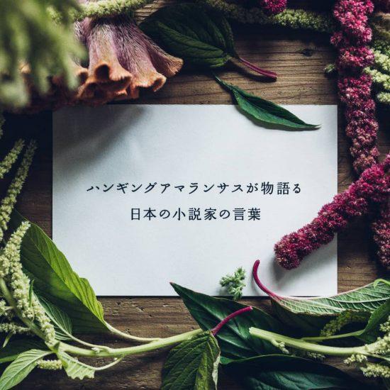 【夜更けの花ことば】vol.7:ハンギングアマランサスが物語る、日本の小説家の言葉