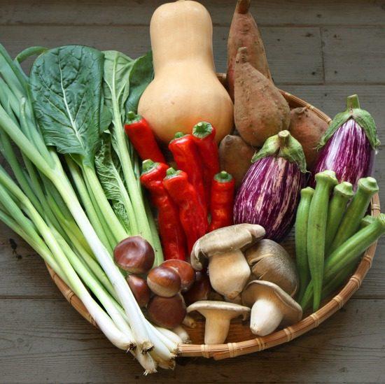 【ただいま収穫中!】野菜だけではない?私たちがお届けしているセットのひみつ。