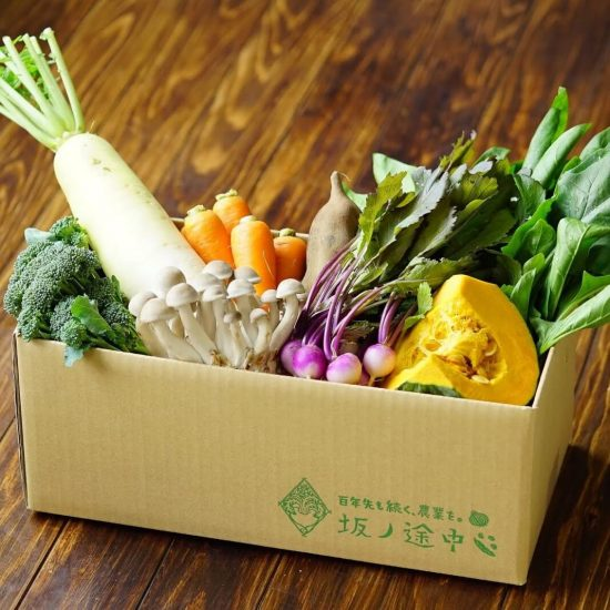 【ただいま収穫中!最終回】野菜がもっと好きになる。「ワクワク」を伝えたい