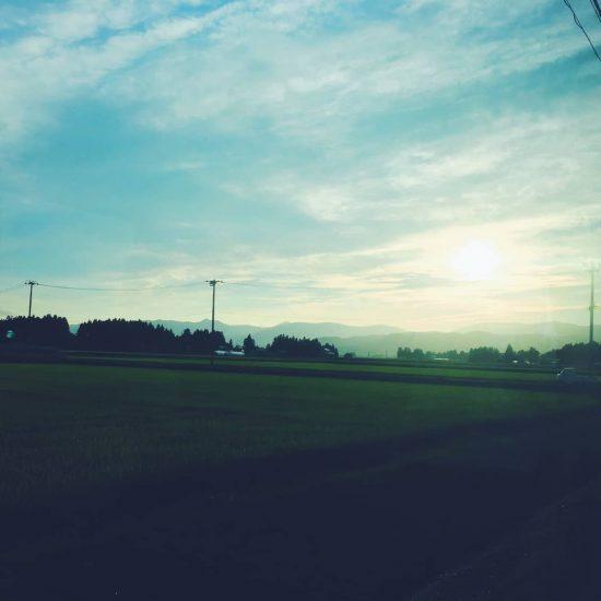 【金曜エッセイ】あの頃、たしかに眺めたはずの「夜明け」を忘れる(文筆家・大平一枝)