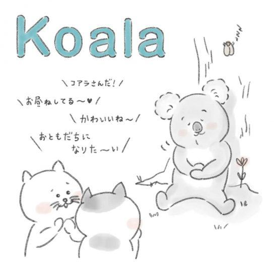【ネコかるたイングリッシュ】「K」から始まる…「koala」