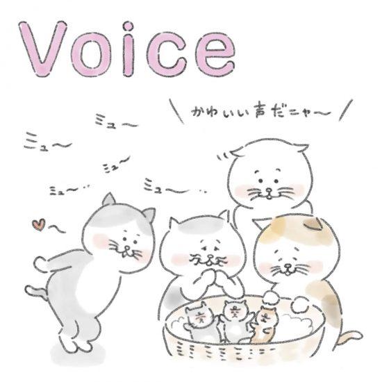 【ネコかるたイングリッシュ】「V」から始まる…「voice」