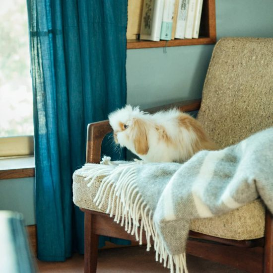 【北欧のブランケットと、冬の暮らし】前編:家をもっと好きに。寒がりさんの、冬のたのしみを聞きました