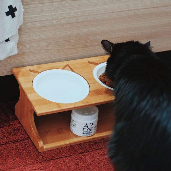 【スタッフの愛用品】猫との暮らしが、ぐっと快適になる!「A2 Care」の消臭ゲル