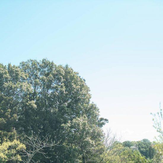 【隣の芝が青くても】前編:人と比べて、落ち込むクセをどうにかしたかった