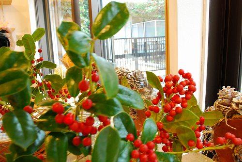 ★12/25日のクリスマスは国立店の営業日です★