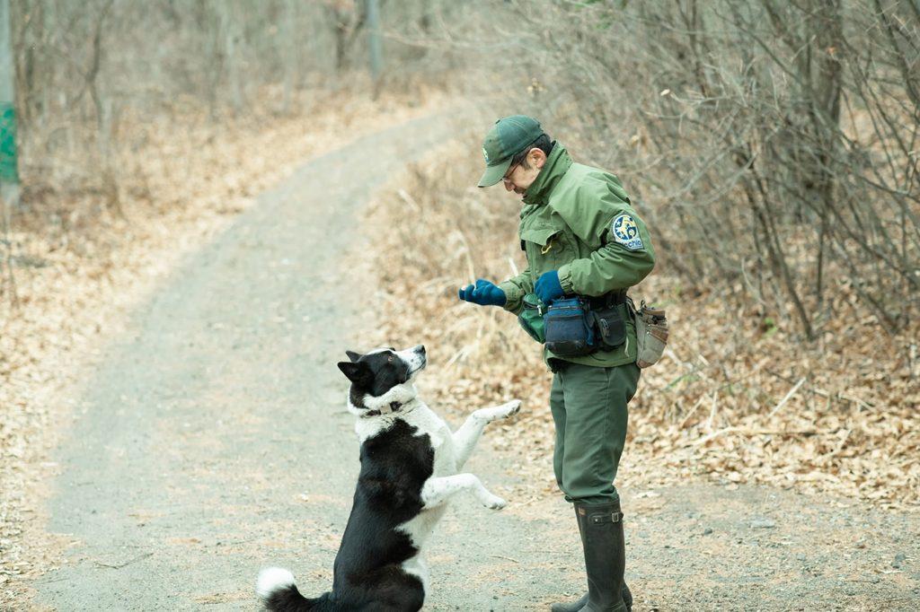 竪穴式住居で犬と暮らし、クマに思いをはせる。日本初のベアドッグハンドラー、田中純平。